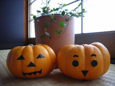 ミニかぼちゃ