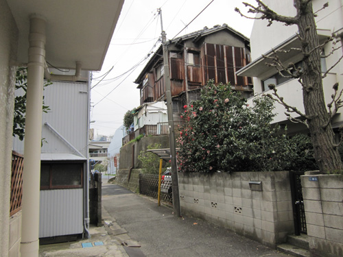 ikegami_013.jpg