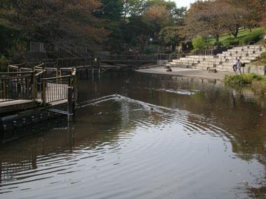 200911081.jpg