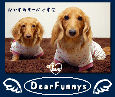 DearFunnys1.jpg