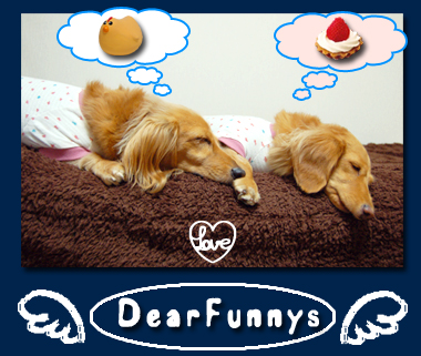 DearFunnys2.jpg