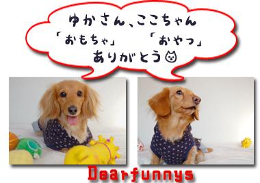Dearfunnys2_20071215231334.jpg