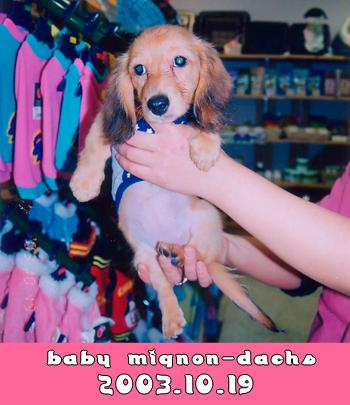 babymignon