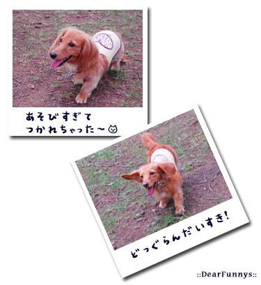 photo2-karuizawa.jpg