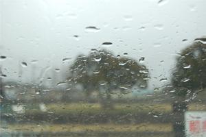 storm080224.jpg
