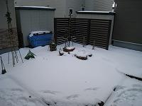 1124雪