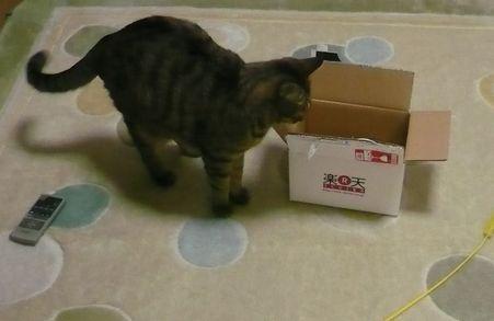 箱や・・・