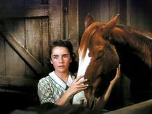Elizabeth Taylor - National Velvet (1945)