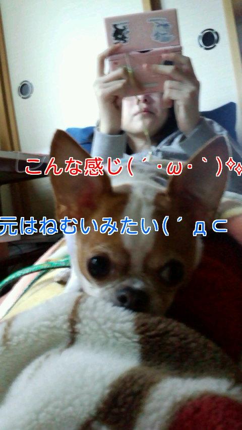 !cid_01@110409_125118@_____N905i@docomo_ne.jpg