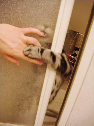 ドア越しに
