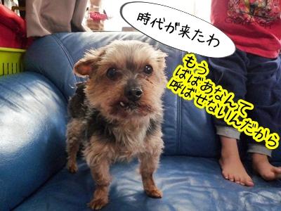 じじばばP1350438