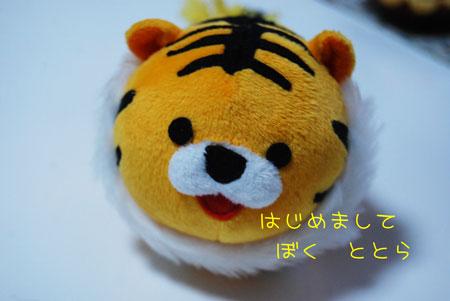 01_20091103215546.jpg