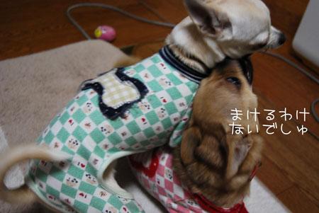 02_20091109195111.jpg