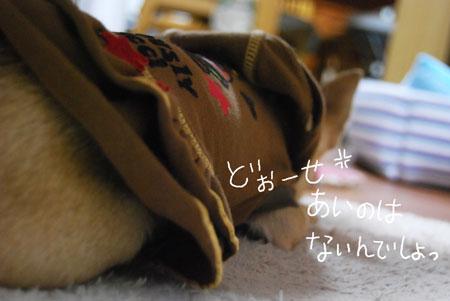 03_20090913201440.jpg