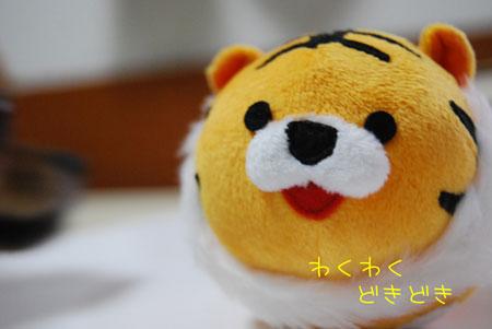 04_20091103215539.jpg