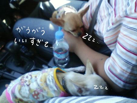 05_20090913201440.jpg