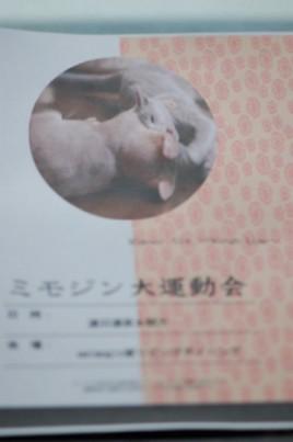 ミモジン大運動会ポスター