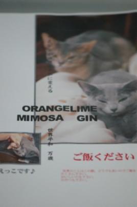 ミモジン世界平和ポスター