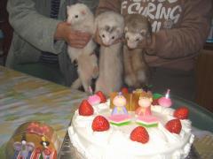 雛ケーキと