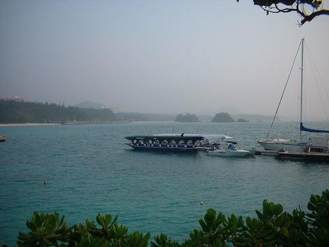 鯨のグラスボート