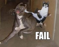 faildogs.jpg