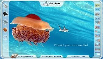 marinelife.jpg