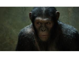 猿の惑星2