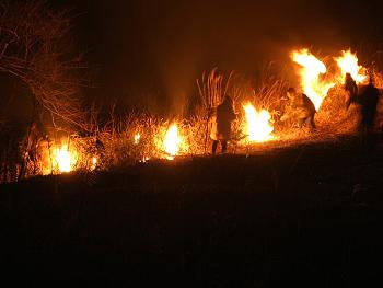 秋吉台野火の祭典-1