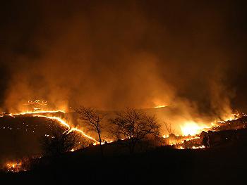 秋吉台野火の祭典-6