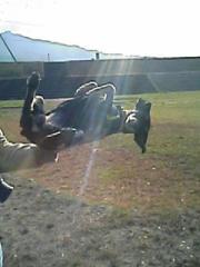 2007.11.15-6