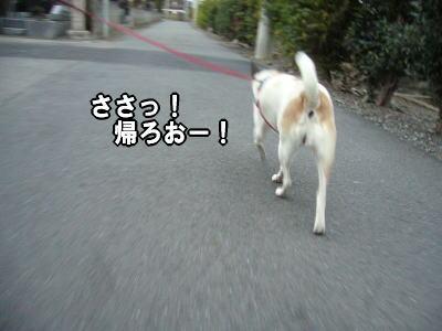 2007-11-21-12.jpg