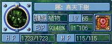 真天下0305
