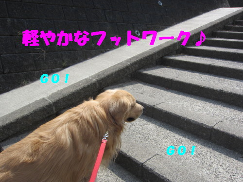 4.5 002