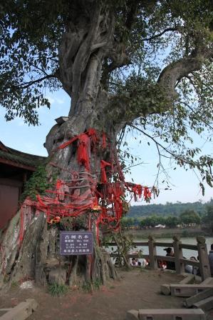 黄龍渓古鎮14