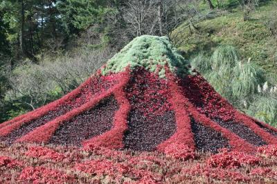 静岡県 紅雲の雪景冨士