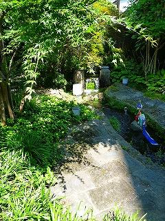 三島 四ノ宮川 せせらぎ ④ 水源地