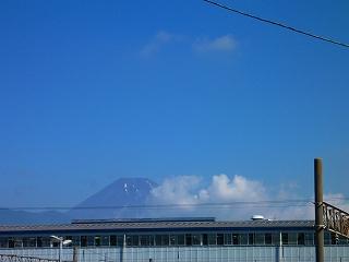 三島駅 南口 富士山 眺望 駅近