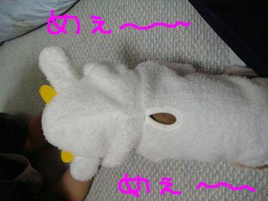 20071111_4.jpg