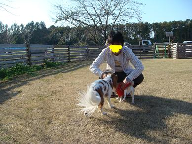 20071124_4.jpg