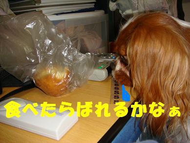 20071201_2.jpg