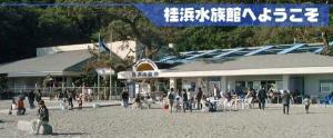 桂浜水族館.jpg