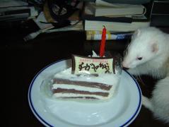 チガヤとケーキ①