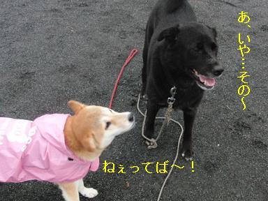 マーチ君ってば~!