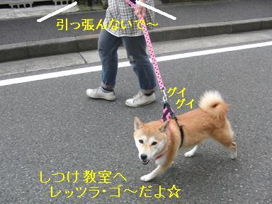 レッツラ・ゴ~!
