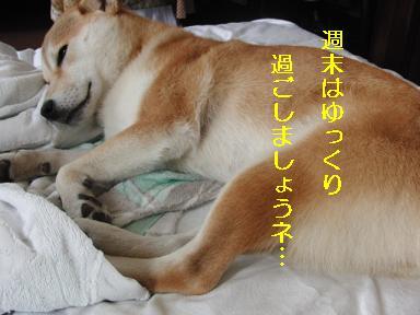 良い週末を~!