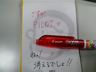 PILOT5.jpg
