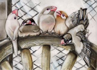 椅子の上の文鳥WEB