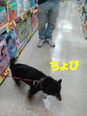 20060416114026.jpg