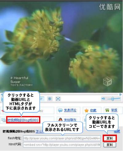 Youku視聴