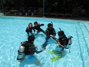 pool_20091013192522.jpg